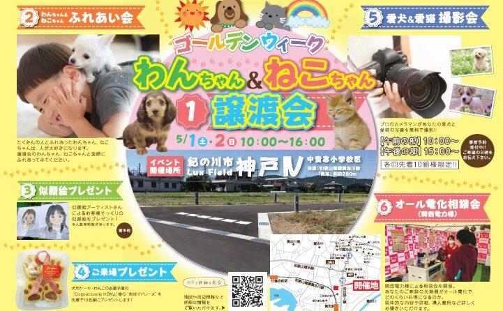 *5/1(土)2(日)わんちゃん&ねこちゃん譲渡会*